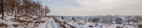 Winter in Gelderland